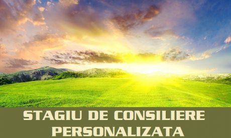 STAGIU DE CONSILIERE PERSONALIZATA