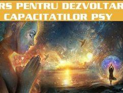 curs dezvoltarea capacitatilor psy2