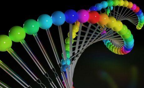 ADN UMAN ASCENSIUNE EVOLUTIE SPIRITUALA