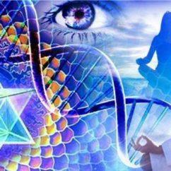 Seminar Despre Multivers, Creatie si Meditatie - cu Alice Bailey