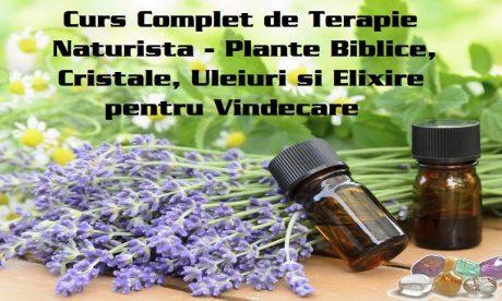 Curs Complet de Terapie Naturista – Plante Biblice, Cristale, Uleiuri si Elixire pentru Vindecare