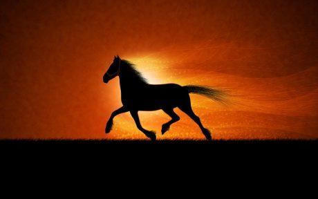 Horse Constructiile Mayase - Piramida Kukulcan Si Chichen Itza
