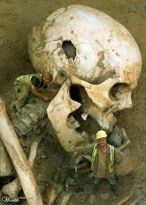Schelet De Urias Giganti Descoperiti In Grecia In 2012