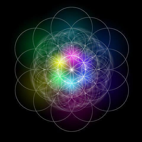 Flower Of Life (4)