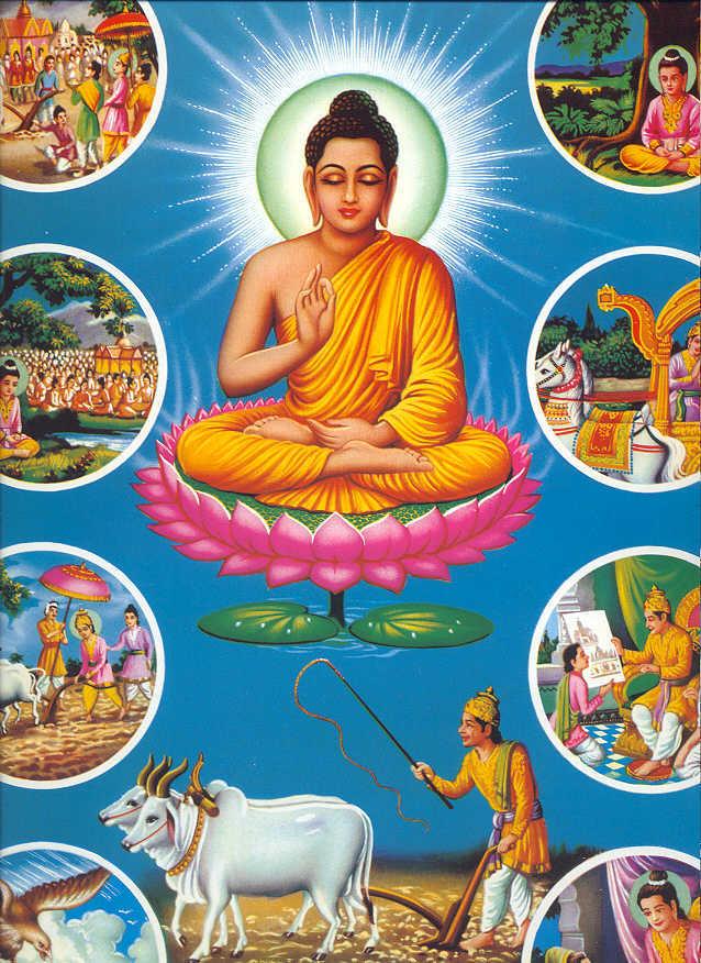 Buddha5 Citat Buddha - Kalamn Sutra
