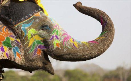 India În Asia, 80.000.000 De Oameni Vorbesc Limba Română!