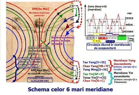 Meridiane Energetice Meridianele Energetice Si Importanta Lor In Sanatatea Individului